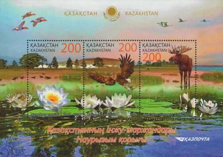 kz863-5a